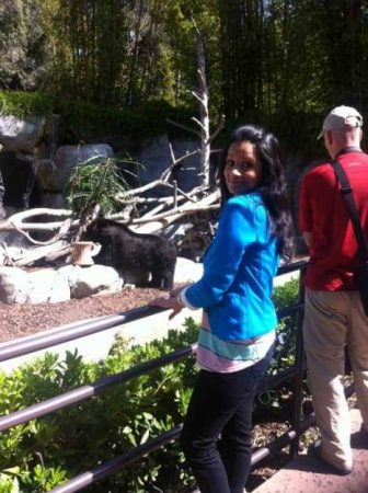 In honour of Anchorman, we went to see the bears at San Diego Zoo